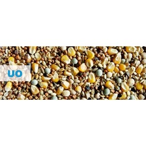 Kampol UO UniversalEconomic