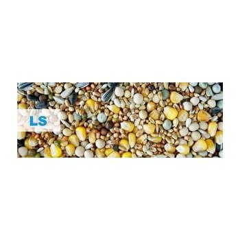 Kampol LS Concurs Standard (25 kg)