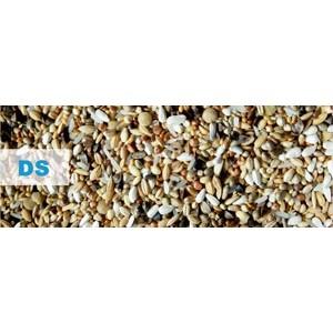 Kampol DS DepurativSpecial