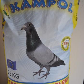 Kampol Z Iarna-Repaus