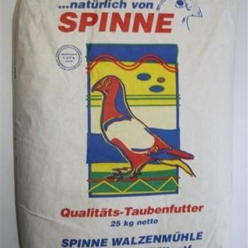 Spinne TopEnergy