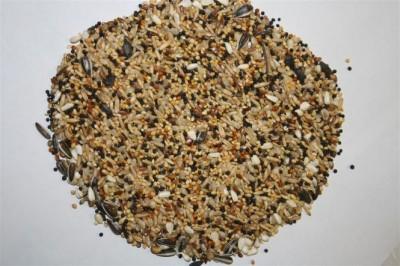 Spinne Seminte oleaginoase (25kg)