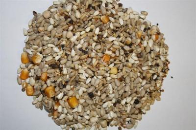 Spinne Premium Hrana bogata in grasimi (25kg)