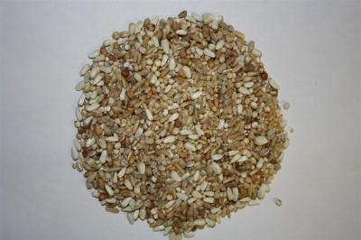 Spinne Hrana Usoara (25kg)
