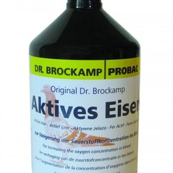 Aktives Eisen (500ml)