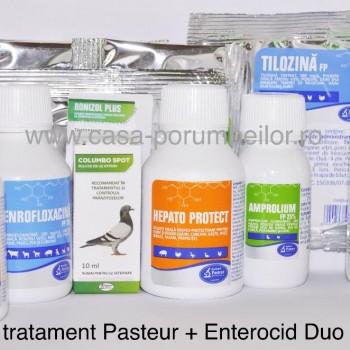Pachet Pasteur