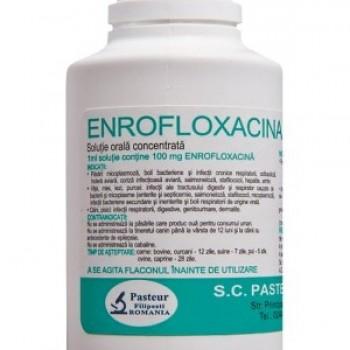 Enrofloxacina FP 10% (100ml)