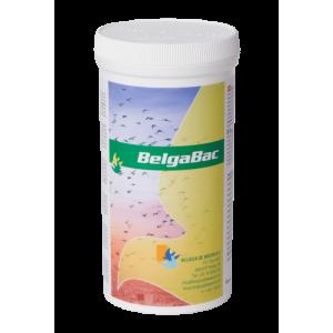 BelgaBac (300g)
